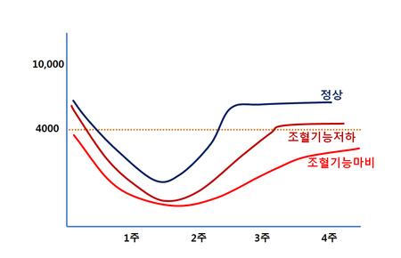항암치료와_조혈기능_회복_관계_그래프