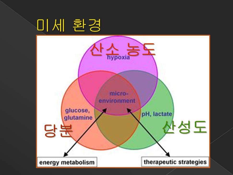 암치료 전략 5계 미세환경 산소농도, 당분, 산성도