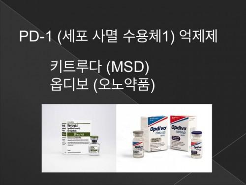 면역치료1