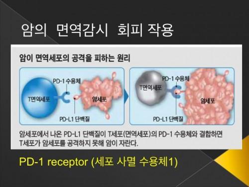 면역치료2