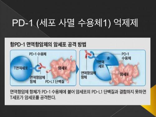 면역치료3