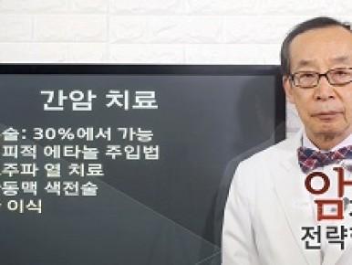 간암의 치료
